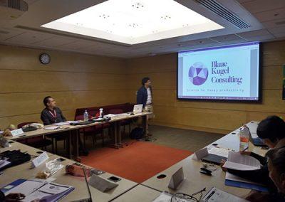 Presentación de servicios Blaue Kugel Consulting